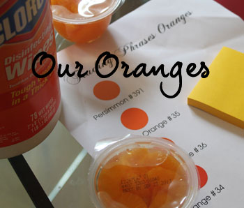 Color Closeup- Our Oranges