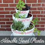 Tiered Herb Planter