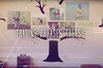 Video: Tree Decals & Nature