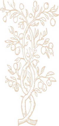 Woodcut Branch | Wall Decals