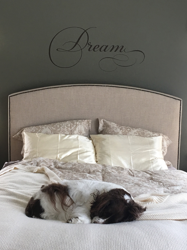 Dream Simply Words Wall Decal