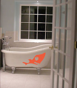 Sea Creature Wall Decal