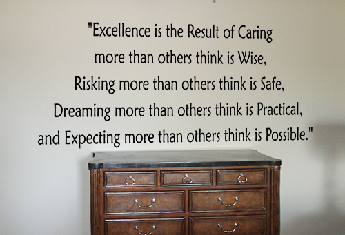 Excellence Is Caring Decal