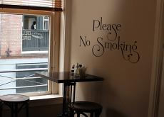No Smoking Swoopy Wall Decal