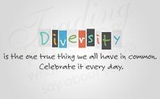 Diversity Printed Decal