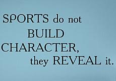 Sports Reveal It Wall Decal